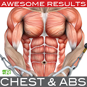 Muscle Building - Chest & Abs