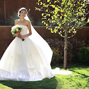 Bridal portrait by Kristin Cheatwood - Wedding Bride ( vera wang, green, white dress, beauty, bride )