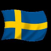 Fan Flag SE