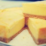 水母吃乳酪(新社)