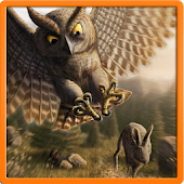 Owl Patrol -The Flappy Raptor