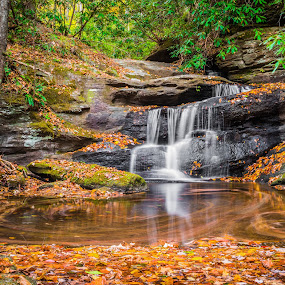 Last Falls on Slickum by Tom Moors - Landscapes Waterscapes ( water, slickum creek, pool, swirl, foliage, fall, waterfall, current, leaves, south carolina )