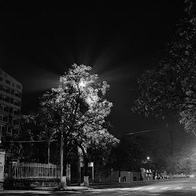 Cold by Lê Thị Thanh  Tâm - Black & White Street & Candid