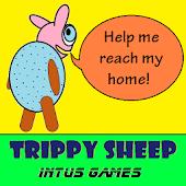 Trippy Sheep