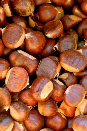 Chestnuts Free Live Wallpaper
