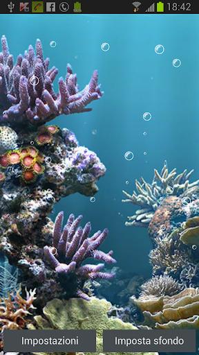 Aquarium Bubbles Free