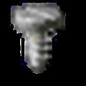 Robboid