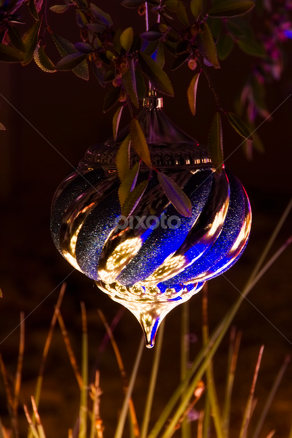 0171-Lone Ornament by Fred Herring - Public Holidays Christmas (  )
