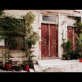 The old house by Gabriela Ivanova - Buildings & Architecture Other Interior ( old house, street, house, architecture, flowers )
