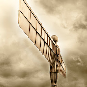 Angel of the North by Darrell Evans - Buildings & Architecture Statues & Monuments ( antony gormley, sculpture, statue, metal, wings, gateshead, angel of the north, , vertical lines, pwc )