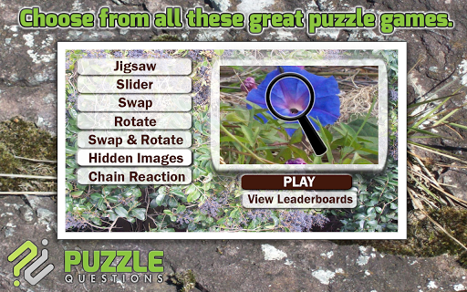 Free Wild Flowers Puzzle Games