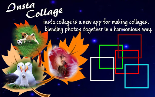 【免費攝影App】Insta Collage-APP點子