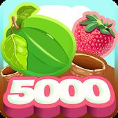 Berry 5000