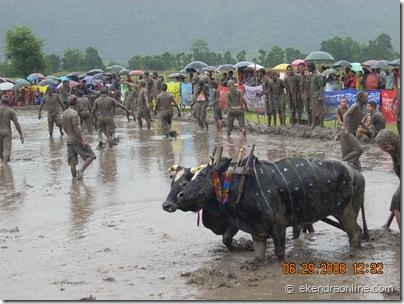 ropai mahotsav, hile jatra pokhara 2008 (2)