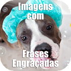 Funny Images in Portuguese icon