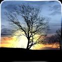 Silhouette Free Live Wallpaper logo