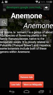 Flowers Dictionary screenshot