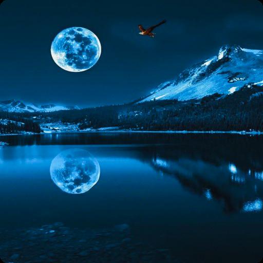Blue Moon Live Wallpaper HD LOGO-APP點子