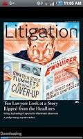 Screenshot of Litigation