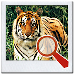 Find It 2™ Find the Difference 6.6 Apk