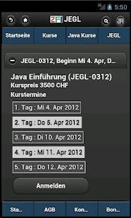 Zentrum für Informatik ZFI- screenshot thumbnail