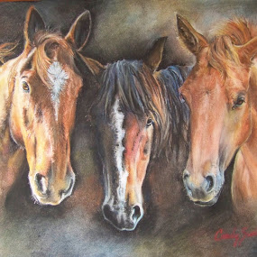3 Generation Horse Portrait in Pastel by Cindy Swinehart - Drawing All Drawing ( pastel, horses, horse, painting, drawing )