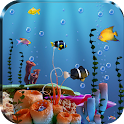 Live Fish Feed Wallpaper icon