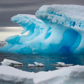 by Mark Anolak - Landscapes Waterscapes ( iceberg, antarctica, polar circle, lallemand fjord, 66°33'45'',  )