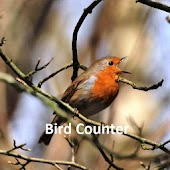 Bird Count for Ornithology