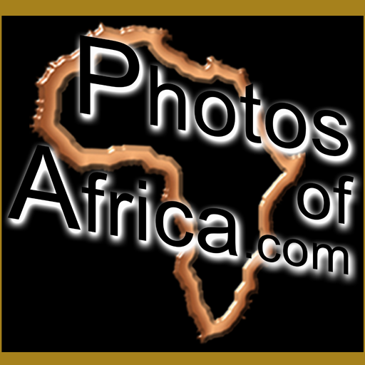 HD Video & Photo Stock Footage 媒體與影片 App LOGO-APP開箱王