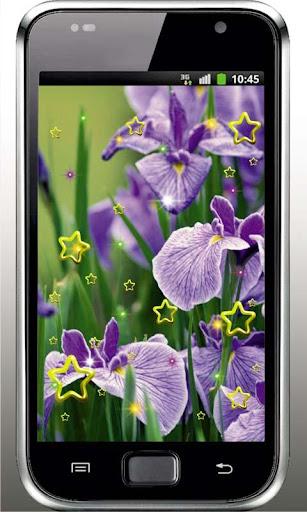 Iris Garden live wallpaper