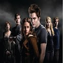 Twilight Series icon