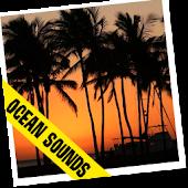 Sunset Live Wallpaper HD