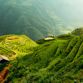 Ping An rice terrace field by Muhasrul Zubir - Landscapes Travel