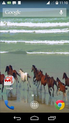 Beach Running Horse