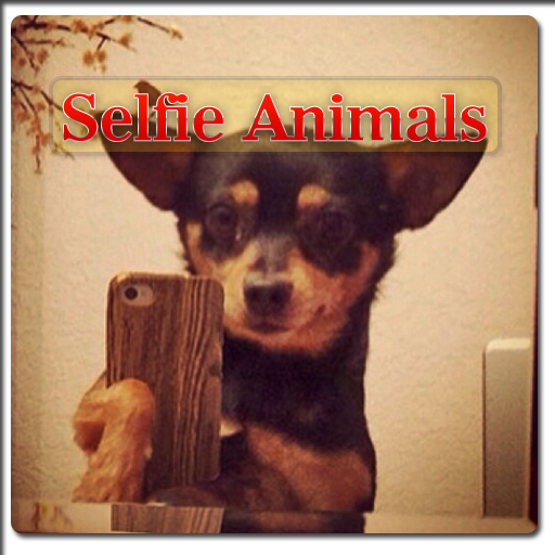 free selfie Animals