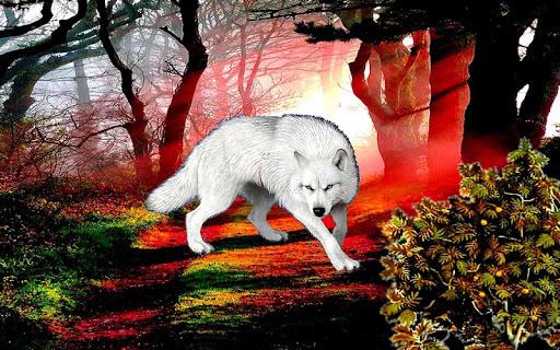 【免費個人化App】3D Wolf Wallpaper-APP點子