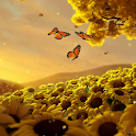 Sunflowers HD icon