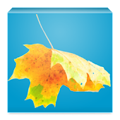 Download Weather Flo APK for Laptop
