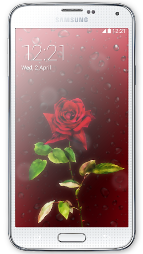 Red Rose HD Live Wallpaper