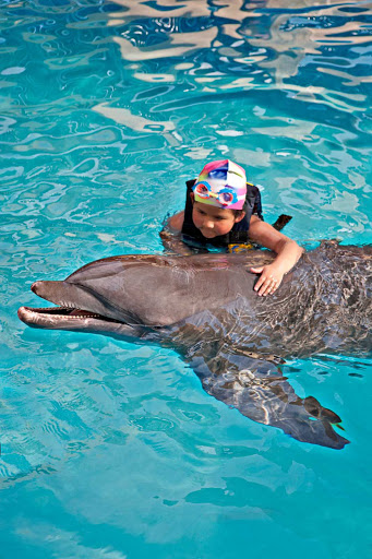Acapulco-dolphin - Visitors of all ages can swim with dolphins in Acapulco.
