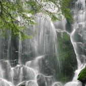 Beautiful Waterfall Pics