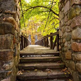 Bridge into Fall by Kimberly Davidson - Buildings & Architecture Bridges & Suspended Structures ( fall landscape, genesee recreation area mi., stone bridge, bridge,  )
