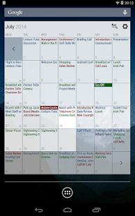Business Calendar Screenshot 22