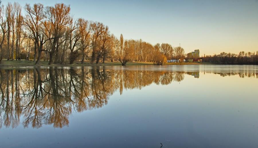 by László Szammelcsik - Nature Up Close Water