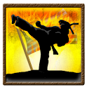 Ninja Karate Defence icon