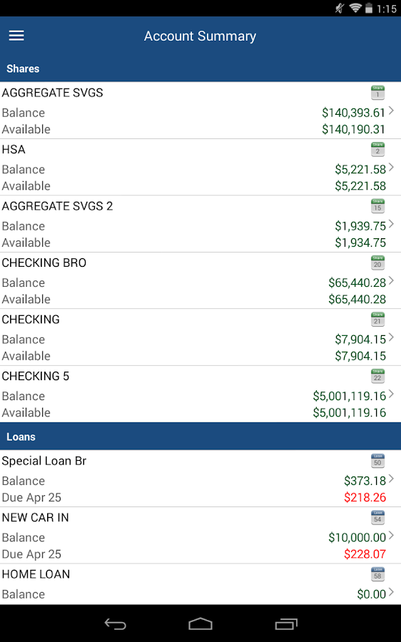 Leyden Credit Union - screenshot