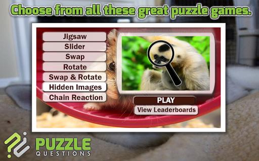 免費動物遊戲