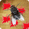 Shoot Fly icon