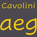 Cavolini FlipFont icon